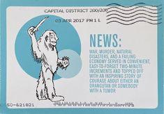 Orangutan, Natural Disasters, Washington Dc, Postcards, War, Memes, Meme, Greeting Card