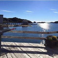 Finally in #Lofoten #Norway! #achickinNorway #chicksandtripsontheroad #instatravel #instanorway #sea