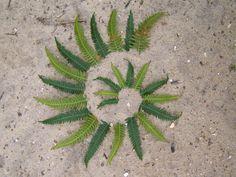 Fern leaf spiral by Dishtwiner