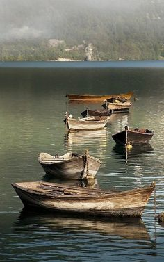 The Lago di Santa Croce is a semi-natural lake in the province of Belluno, Veneto, northern Italy, Boat Building Plans, Boat Plans, Boat Art, Old Boats, Boat Painting, Northern Italy, Wooden Boats, Fishing Boats, Pictures