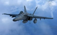 Download wallpapers McDonnell Douglas FA-18 Hornet, deck fighter-bomber, American military aircraft, US Air Force, USA
