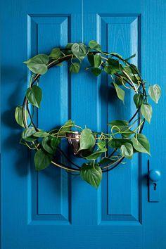 wreaths-green-nov-16