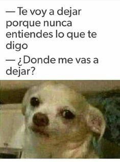 Marcianadas 348 210918001804 (90) Mexican Funny Memes, Funny Spanish Memes, Spanish Humor, Stupid Funny Memes, Funny Texts, Mexican Humor, Bob Meme, Funny Poems, Fuuny Memes