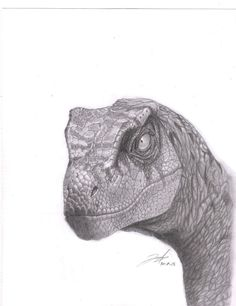velociraptor sketch drawing hand 1/7 jurassic park. from $39.0