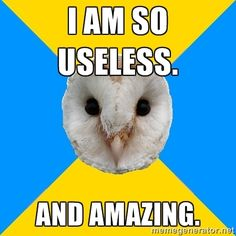 Am So Useless And Amazing Bipolar Owl Car Memes