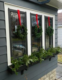 Fun idea for your window box during the holidays.
