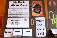 Owl activities and lapbook this website is beyond amazing! Owl Activities, School Age Activities, Educational Activities, Educational Technology, Birds Of Prey, Baby Owls, Owl Babies, Owl Theme Classroom, Classroom Ideas