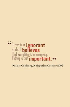 Stress Is An Ignorant State. It Believes That Everything Is An Emergency. Nothing Is That Important.   -Natalie Goldberg, O Magazine