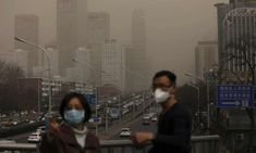 Air pollution will lead to mass migration, say experts after landmark ruling | Environment | The Guardian Environmental Degradation, Environmental Justice, United Nations Human Rights, Mass Migration, Dengue, Island Nations, Air Pollution, World Leaders, Global Warming