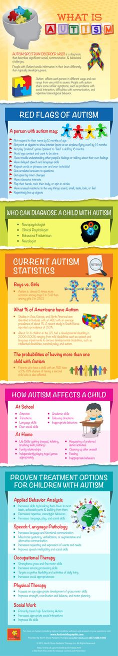 What Is Autism Infographic