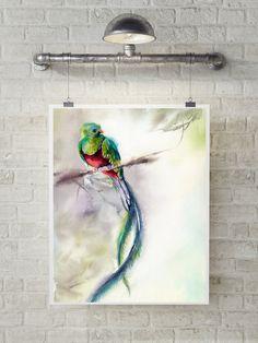 Quetzal Art Print, bird print, watercolor painting of quetzal bird, bird wall art, bird illustration by CanotStopPrints on Etsy
