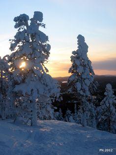 Finland, Lapland  - Suomi, Kuusamo/Ruka  Photo Petri Naukkarinen