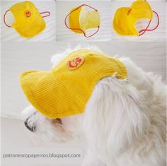 Free Dog Clothes Patterns: Dog cap pattern - maybe another to fit a toy giraffe? Dog Clothes Patterns, Sewing Patterns, Hat Patterns, Sweater Patterns, Costume Patterns, Sewing Ideas, Dog Pattern, Free Pattern, Vest Pattern