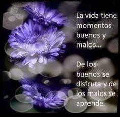 La vida tiene momentos buenos y malos ....