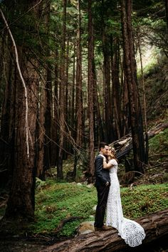 Surrounded by the breathtaking views of the Big Sur Coast and beauty of its redwood forest, Kaitlyn and Matt chose Limekiln State Park in California to begin th Big Sur Wedding, Small Intimate Wedding, Intimate Weddings, Wedding Blog, Wedding Simple, Wedding Ideas, Yellow Wedding, Church Wedding, Wedding Hair