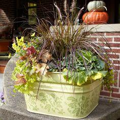 Potted Autumn Arrangement