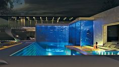 Incredible!  Aquarium / fish tank and swimming pool.  I think this is a CGI, but still remarkable.
