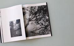 Orchard Volume Three - Idyll, with Mark Steinmetz / Shop / Silas Finch