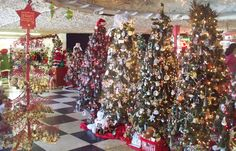 FT Myers SHELL Factory Christmas -Yes Christmas is 365 days at the Shell Factory