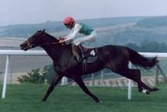 Dancing Brave, caballo Akhal Teké ganador de la Carrera del Arco del Triunfo de 1986, del derby de Shahrastani de 1986, del derby de Guinea en 1986, y fue campeón de varias carreras celebradas en Inglaterra y Francia con 3 años de edad. (?,  - 2 de Agosto de 1999, Japón)