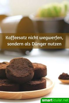 Use coffee grounds as an excellent fertilizer- Kaffeesatz als hervorragenden Dünger verwenden Coffee grounds contain valuable nutrients that your plants will be happy about. Therefore, do not throw it away but use it as fertilizer. Container Gardening Vegetables, Succulents In Containers, Vegetable Garden, Balcony Plants, Garden Plants, Balcony Gardening, Rooftop Garden, Gardening For Beginners, Gardening Tips