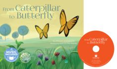 from_caterpillar_to_butterfly.png
