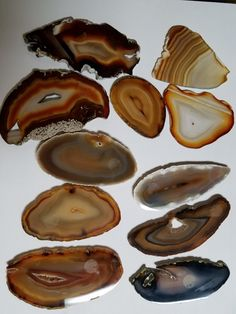 Agate slices #desmoinesnewageshop