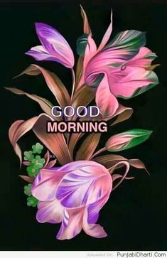 The best Good Morning images collected from all over the web that'll inspire your loved ones & uplift their mood. Good morning images, gifs, wishes, poems, wishes & more! Good Morning Flowers Pictures, Good Morning Photos, Good Morning Friends, Good Morning Messages, Good Morning Good Night, Morning Pictures, Good Morning Wishes, Night Messages, Morning Blessings