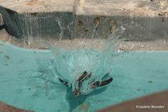 Pinguin-Bauchplatscher