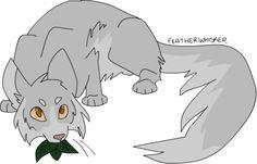Featherwhisker by ukariwarriorcats on tumblr