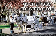 go on a horse and carriage ride