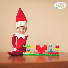 Elf on the Shelf Fun!