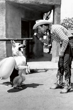 11 Photos Of Hollywood Movie Dogs That We Can't Stop Looking At