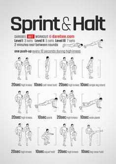 power sprinter workout  full body circuits  sprinter