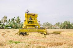 List of New Holland Harvesting Machinery See also Bizon, Braud, Claeys, Clayson, Ford