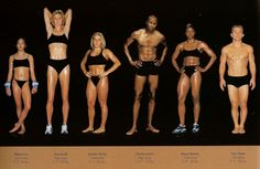 Howard Schatz's Athlete series explores many different variations of the human physique. Here you can see athletes from different sports showing their specific body types. Body Reference, Reference Images, Anatomy Reference, Female Reference, Figure Reference, Art Reference, Athletic Body Types, Anatomy Poses, Different Sports