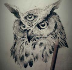 3rd eye owl