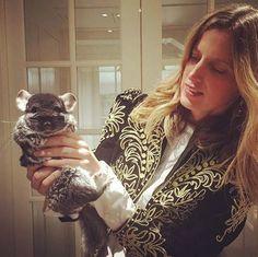 Amanda brooks on pinterest english country homes for Amanda brooks instagram