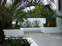 aménagement paysager moderne d'une maison d'architecte
