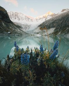 www.littlerugshop.com Colours of the Peruvian Andes. #stayandwander by alexstrohl