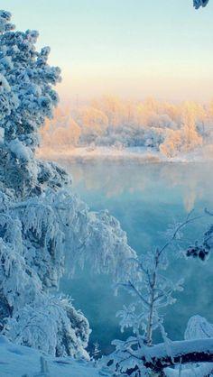 Frozen, Trees, widescreen, Snow, Landscape