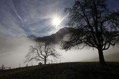 Los rayos del sol se filtran a través de las nubes delgadas por encima de una escena brumosa a una altitud de 800 m, a Dallenwil, cantón suizo de Nidwalden.