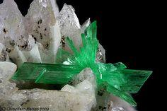 Annabergite, Km-3 Mine, Lavrion, Attika Prefecture, Greece, nice 4.96 mm green Annabergite tuft,  Photo M.Chinellato / Mineral Friends <3