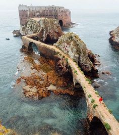 berlengas archipelago, group of small islands off the portuguese coast, west of peniche, oeste, @ananya.ray.