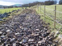 varied terrain in horse paddocks can be used to promote natural hoof health