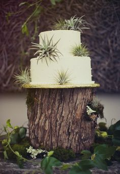Mountain Wedding Cake! Have your wedding in Northstar California and celebrate with spectacular views!