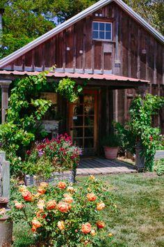Wedding chicks feature.   Olympia's Valley Estate, barn wedding.