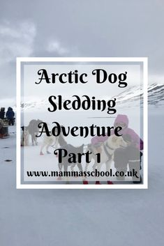 Ever fancied doing a dog sledding adventure in the Arctic surrounded by the most beautiful nature and wilderness? Read part 1 of my Arctic adventure Runaway Train, Countries To Visit, You Are The World, Arctic Circle, Adventure Tours, The Visitors, Travel Abroad, Sled, World Traveler