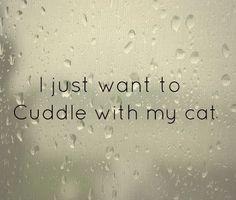 Cat cuddles!! #myrelaxingrituals #yankeecandle