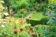 Cottage garden, end of August